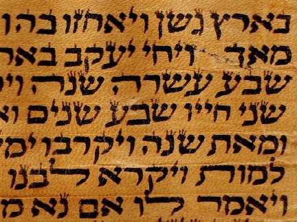 TorahScroll2