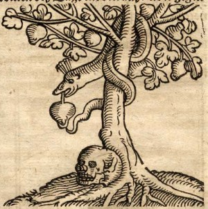 tree-of-knowledge-death