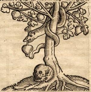 tree-of-knowledge-death