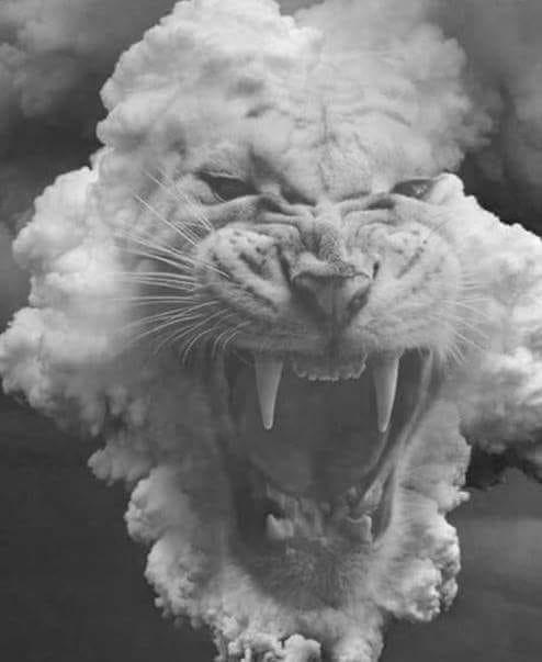 lionpoem